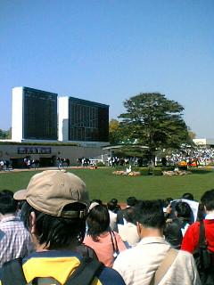 京都競馬名物・円形パドック
